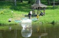 Ребенок в шаре –А это уже развлечения местных жителей