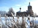 Зима, камыши